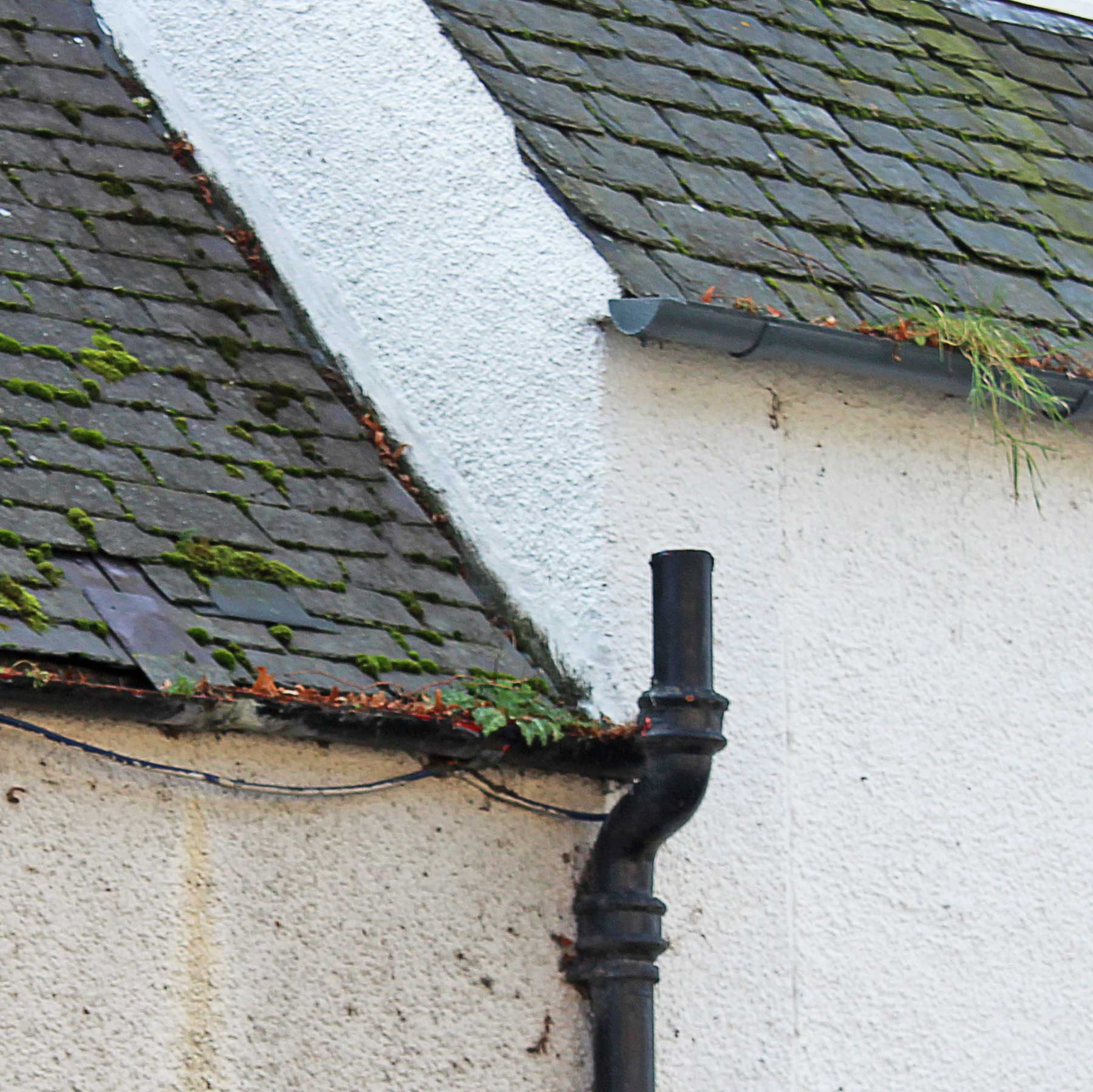 Picture showing blocked gutters and slipped slates, common maintenance issues which will create problems if not addressed quickly.