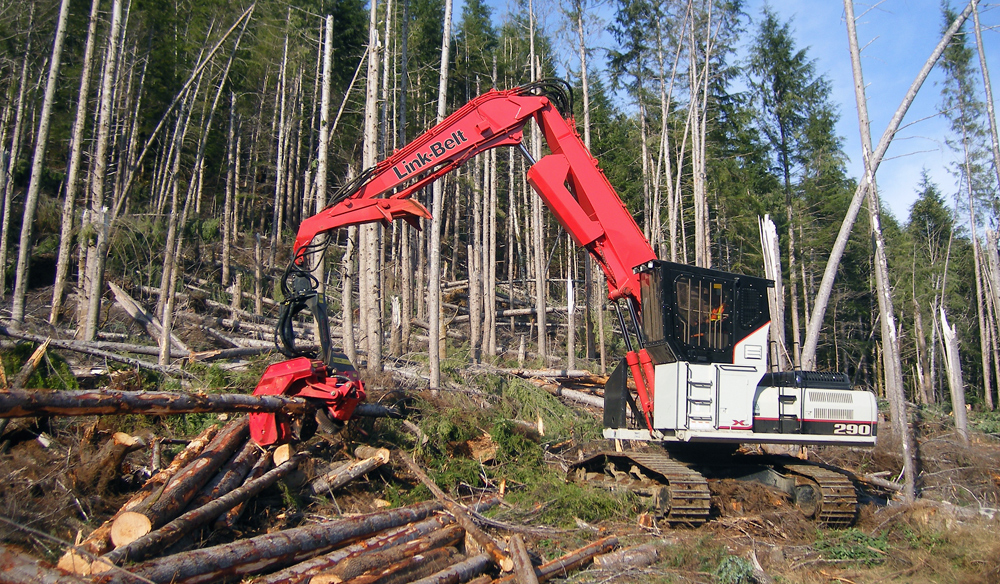 Wood harvesting in the Highlands